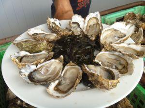 ...bekommt aber trotzdem frische Austern