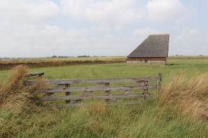 Typische Scheunen mit Windschutz für die Schafe