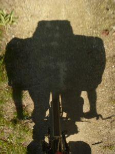 Fahrradroboter